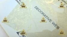 ARM 25960 Decorative web 125 (Паутинка) - Нанесение пленки в Саратове