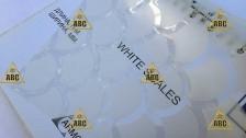 ARM 29096 White Scales (Белые чешуйки) - Нанесение пленки в Саратове